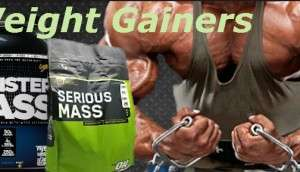 mass gainers without maltodextrin