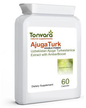 Uzbekistan Ajuga Turkestanica Extract