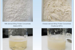 native whey protein powder