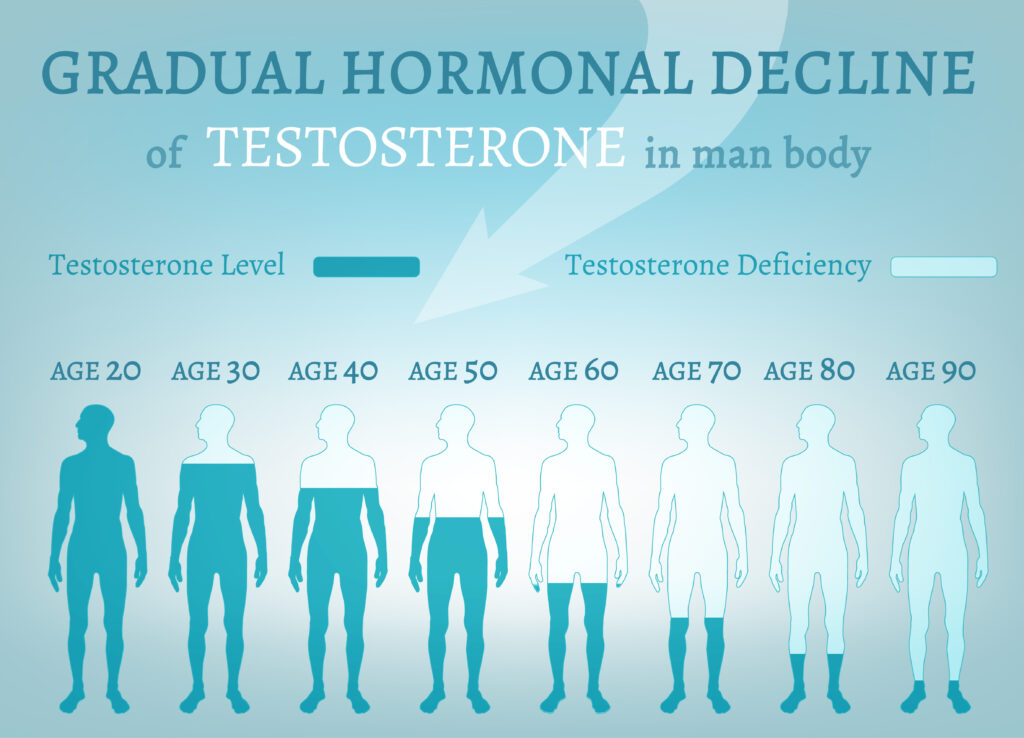 foods that boost testoterone